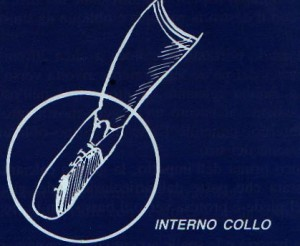 calcio_interno_collo