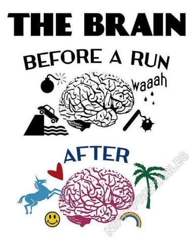 Iniziare a correre: tutto quello che il principiante deve sapere