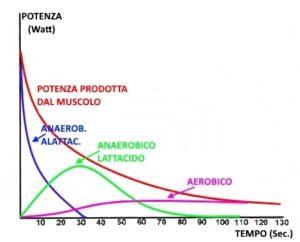 grafico-produzione-atp-nel-tempo