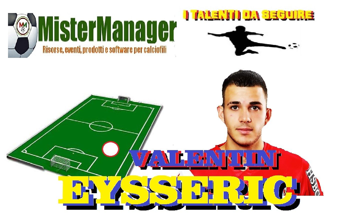 Mistermanager