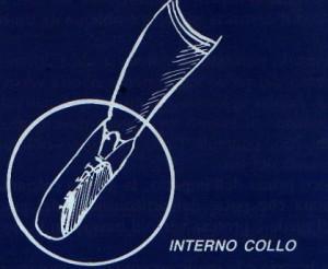 calcio_interno_collo